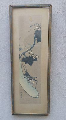 Antique Old Asian Chinese draw Plant w/ Cricket Framed & Signed