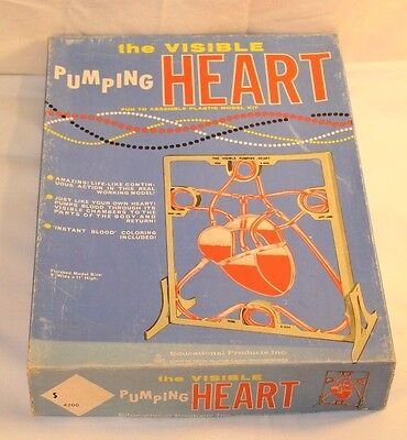 RARE New 1962 Educational Products The Visible Pumping Heart Anatomy Model Kit!