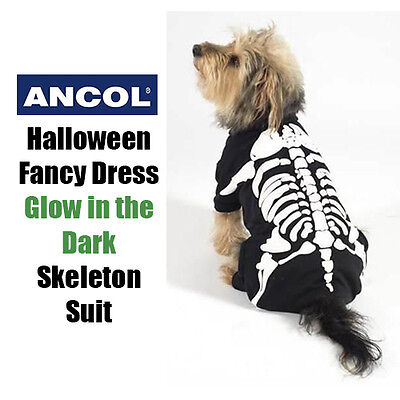 NEW Ancol Halloween Xmas Gift Glow Dog Skull Skeleton Suit Fancy Dress Party