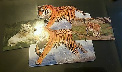 Collection of tiger big cat leopard post cards