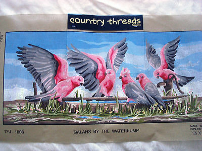 """ GALAH'S by the WATERPUMP "".  Country Threads Tapestry Canvas. 55cm x 25cm"