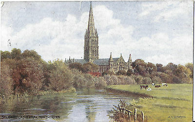 SALISBURY CATHEDRAL FROM THE RIVER - Artist AR Quinton - J Salmon Card - Posted