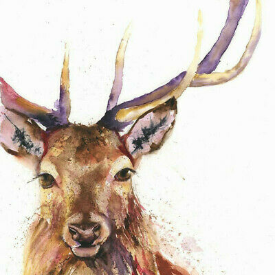 HELEN ROSE Limited Print HANDSOME STAG wildlife art watercolour painting 320