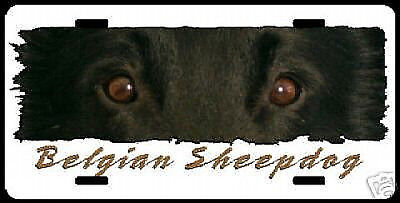 "Belgian  Sheepdog  ""  The  Eyes Have It  ""   Key  Chain"