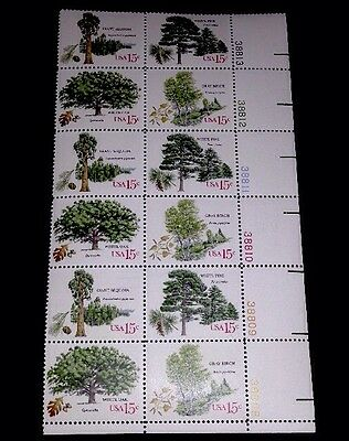 Trees Plate Block Of 12! US Stamps 1767a  Mint MNH, Pine Giant Sequoia Oak Birch