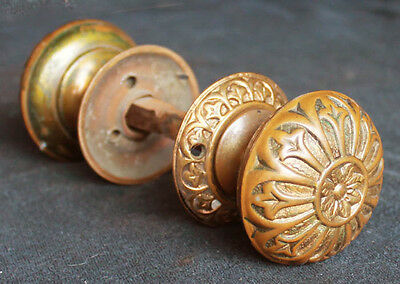 Antique Repro Eastlake Solid Bronze Door Knob Doorknob Handle Pull Plate Rosette