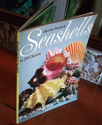 All Color Book of SEASHELLS 1974 J. M. Clayton