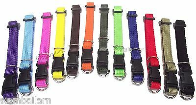 Lot Of 12 Different Colors Nylon ID Whelping Collar Little Puppy Dog Collars