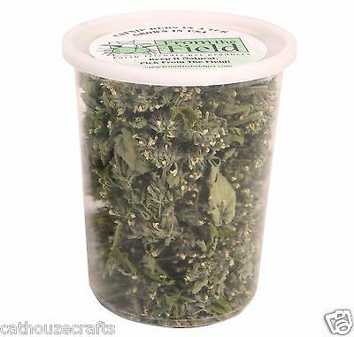 From The Field POTENT ORGANIC CATNIP BUDS, 1-Ounce Tub