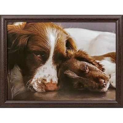 Springer Spaniel with Pup Lap Tray by Country Matters