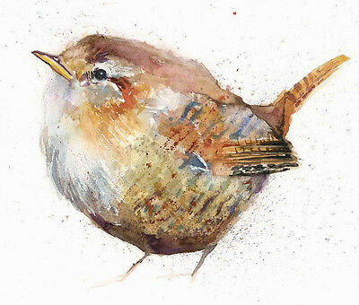 HELEN ROSE Limited Print JENNY WREN wildlife art watercolour painting 314