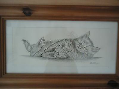 Framed Pencil Drawing Print Kitten 'Lazy Days IV' by Steve O'Connell