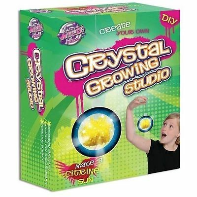 Brand New Wild Science Crystal Growing Studio Kit Educational perfect gift!