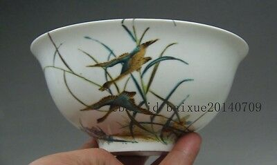old collectibles chinese Porcelain Hand painting birds & Poetry bowls pot NER020