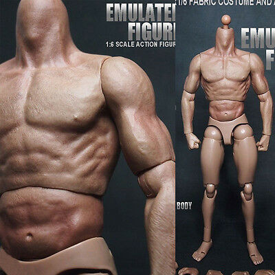 """Toys 1:6 Scale Muscular Figure Body fit For 12"""" Hot Toys Head SCULPT Free Ship #"""
