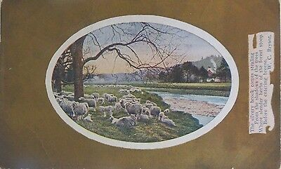 Antique Postcard W C Bryant Saying Sheep Water Gold Foil Blanche M Savage Used