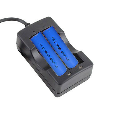 2x ICR 18650 2200mAh 3.7V Li-ion Rechargeable Battery+ 18650 battery VDE Charger