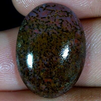 15.75Cts 100% NATURAL BEST QUALITY AFRICAN DINOSAUR BONE OVAL CABOCHON GEMSTONE