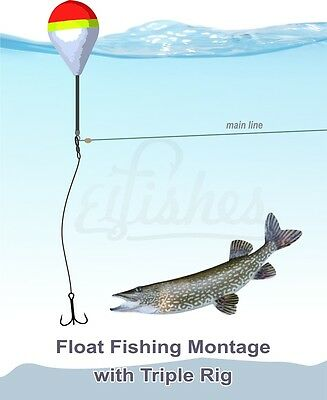 Fishing Float Montage - Triple Fishing Rig - Carp, Pike, Sheatfish and other