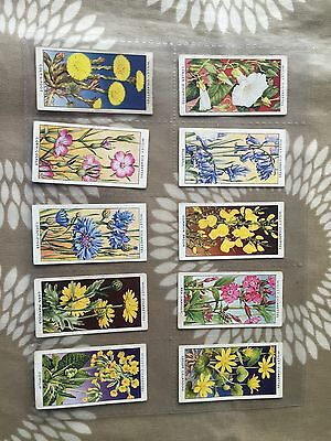 Wills Wild Flowers A Series - Cigarette Cards - Full Set In Sleeves