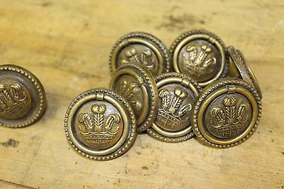 7 Victorian/Georgian-style Cast Brass Fleur de Lys Drawer Pulls + 1 without ring