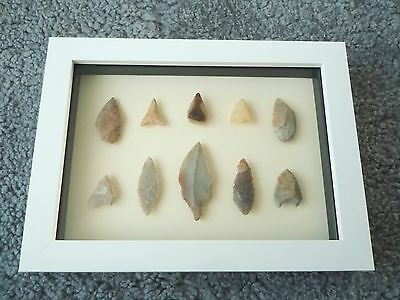 Neolithic Arrowheads in 3D Picture Frame, Authentic Artifacts 4000BC (0436)