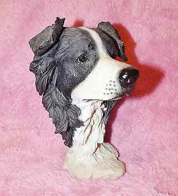 BORDER COLLIE BUST, WELL MADE , STANDS 19.5cm ,, 13cm WIDE ACROSS EARS,