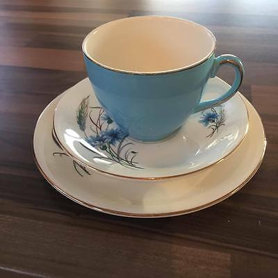 Alfred Meakin vintage trio cup saucer plate