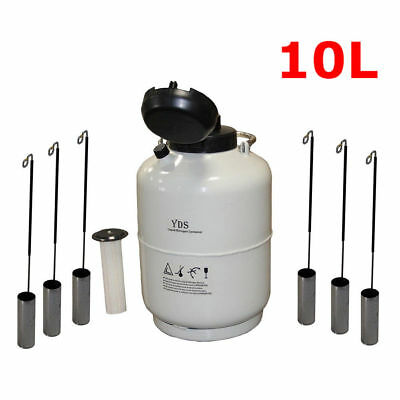 New 10L Liquid Nitrogen Tank Cryogenic Container LN2 Dewar+6Pcs Pails+Lock Cover