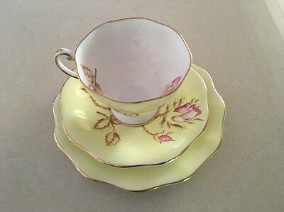 Foley Vintage Cup Saucer Plate Trio Set 1885 - 1947 Yellow Pink Rose Gold Edging