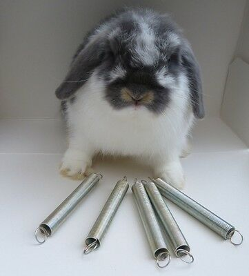 Water Bottle Spring  holder for Rabbit-ferrets-Guineapig/hutches/cages/runs x 1
