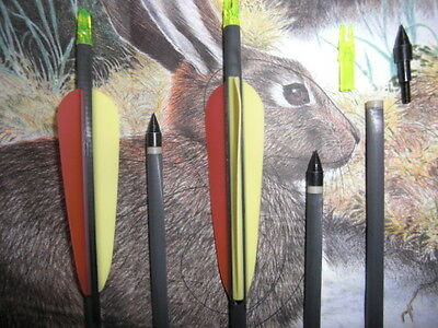 """5 x 30"""" Armex Superfast Carbon Hunting/Target arrows 4"""" fletching field tips"""