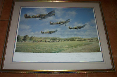 WW2 SIGNED by 20 SPITFIRE PILOTS 60th Anni DOUGLAS BADER INSPIRATION PRINT