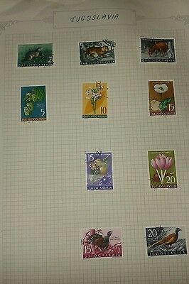 3 album pages of yugoslavia stamps