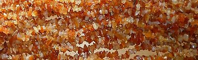 Carnelian Drilled Chips - String approx 34 inches long and weighs 55 grams