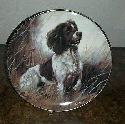 Danbury Mint Always Willing The Springer Spaniel Collectors Plate