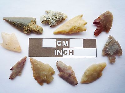 Neolithic Arrowheads, 10 x Barbed and Tanged Artifacts - 4000BC - (Q142)