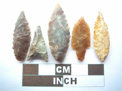 Neolithic Arrowheads x5, High Quality Selection of Styles - 4000BC - (X049)