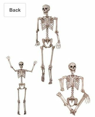 """60"""" inch Pose-N-Stay Skeleton 5 FOOT/1.52 METRE Halloween Prop Life Size Scary"""