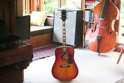 Ibanez Concord 684E 684 with pickup Hummingbird style acoustic electric