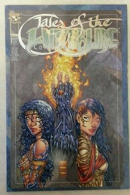 Tales of the Witchblade Collected Editions Vol 1