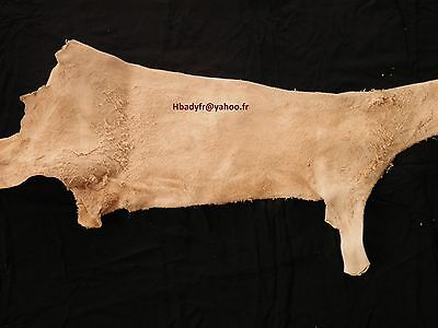 Natural Goatskin for Bagpippe