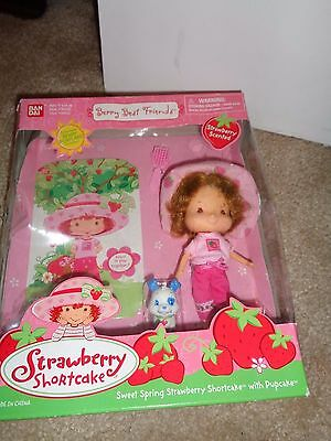 Strawberry Shortcake Sweet Spring Doll With Pupcake New in Box