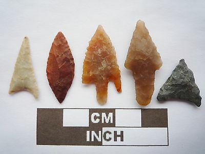 Neolithic Arrowheads x5, High Quality Selection of Styles - 4000BC - (Q084)