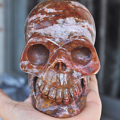 """5"""" Natural Unnamed Agate Carved Crystal Skull Figurine Healing Realistic Human"""