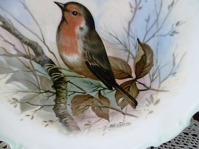Woodlands Bird Collection Robin  Plate Royal Albert Made In England