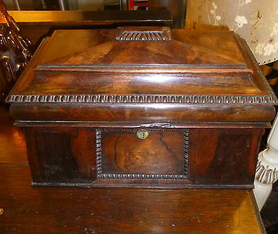 Antique Stunning Regency Rosewood  Sarcophagus Tea Caddy early 19th century
