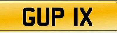 GUP1X  private cherished registration number plate