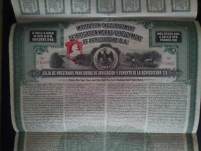 $ 100 Institution Irrigation Agriculture Mexico + 32 Uncancelled Coupons 1914