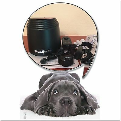 Petsafe PIF00-12917 Stay And Play Wireless Fence Containment System Full